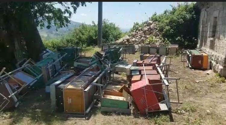 Prosegue l'ondata di atti criminali nei confronti degli apicoltori