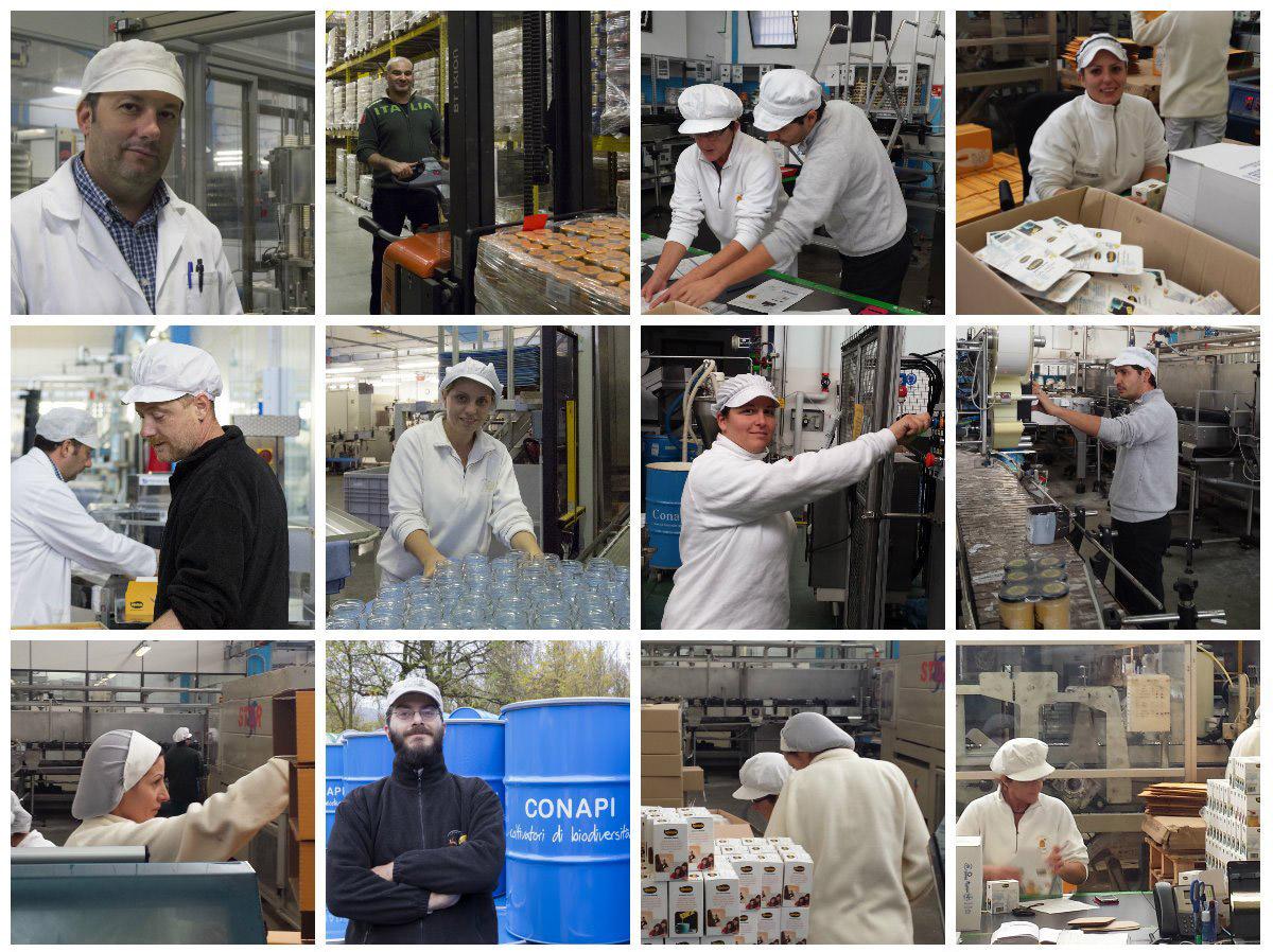 Conapi - Consorzio Nazionale Apicoltori. Produzione e confezionamento miele e prodotti apistici