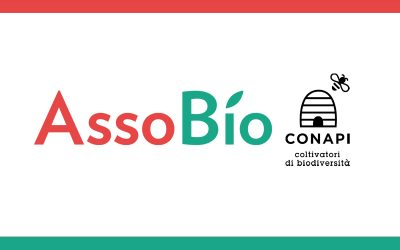 Conapi nel consiglio direttivo di Assobio con Nicoletta Maffini nel ruolo di vicepresidente