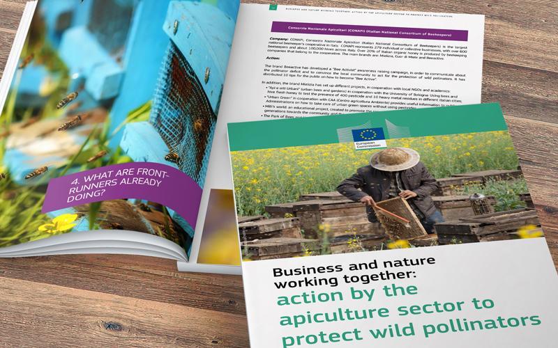 Le buone pratiche CONAPI nell'iniziativa UE a favore degli impollinatori