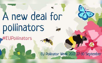 Dal 27 al 30 settembre 2021 la settimana europea interamente dedicata agli impollinatori